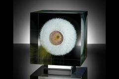 cosmic flower 2 (2016) – 22x22x22 cm Optifloat, painted, glued, polished glass